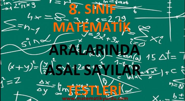 8. Sınıf Aralarında Asal Sayılar Testi