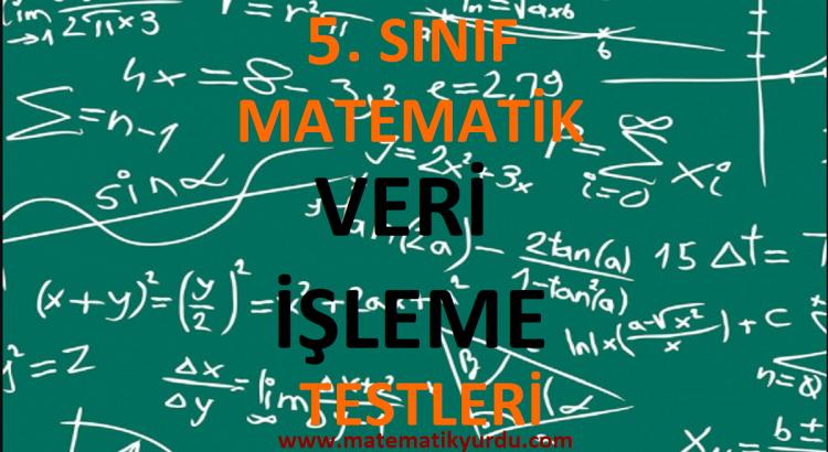 5. Sınıf Veri İşleme Testi